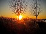 Sunset, Eire Basin Park